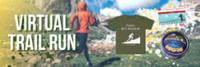 Virtual Trail Run Ultra - Anywhere, NY - race113017-logo.bGSfws.png