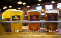 Sailfish Beer Mile 2021 Live & In Person! - Fort Pierce, FL - race112938-logo.bGROup.png