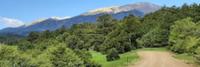 Spanish Peaks Backroads 5 Miles - Aguilar, CO - race113124-logo.bGUvA3.png