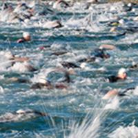 Moraine Open Water Clinic Swim To The Bridge - Portersville, PA - triathlon-3.png
