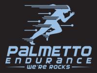 Palmetto Endurance Race Series - Anderson, SC - race113222-logo.bGUrk5.png