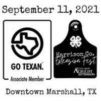 Extension Fest. 5K/Fun Run - Marshall, TX - race113878-logo.bGYsjB.png