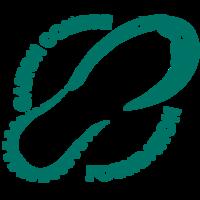 Gaston College Foundation Stampede for Student Success 5K - Dallas, NC - race113497-logo.bGYrlk.png