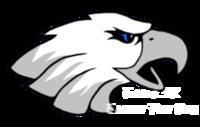 Holy Trinity Eagle 5k & Eaglet Fun Run - Metamora, OH - race114294-logo.bG3qoK.png
