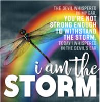 I Am the Storm - Wheaton, IL - race114695-logo.bG3YbD.png