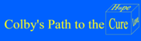 Colby's Path to the Cure - Westfield, MA - race115304-logo.bG-d9_.png