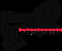 Silence the Shame Virtual 5K 2021 - Alpharetta, GA - race114357-logo.bG3npt.png