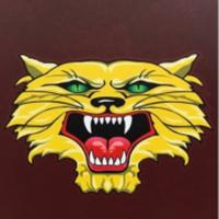 Kalida Wildcat Invitational - Ottawa, OH - race100467-logo.bFCOTz.png