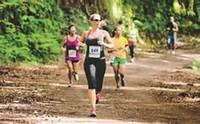 6th Annual Falcon 5K Trail Race sponsored by LUSO Federal Credit Union - Wilbraham, MA - b0f41518-3a36-4e68-b009-0927dc0d5767.jpg