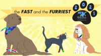 The Fast and the Furriest 5K and Barkstock Festival - Dunwoody, GA - race115684-logo.bG-mXO.png