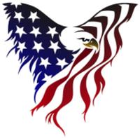 3rd Annual American 5k - Swartz Creek, MI - race64745-logo.bHhD8s.png