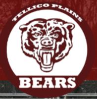 TPHS Baseball Presents Veterans Day 5k - Tellico Plains, TN - race117527-logo.bHjeA2.png