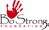BoStrong Foundation Virtual 5K or 1-Mile Fun Walk - Elkridge, MD - race117985-logo.bHmtdQ.png
