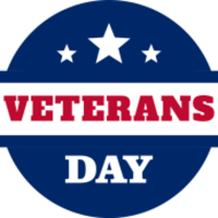 Veterans Day PT Challenge 2021 - The Colony, TX - race118796-logo.bHqN-K.png