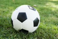 Team Doogie's Social Soccer League (Good for beginners and intermediate) - North Port, FL - race118588-logo.bHqhSE.png
