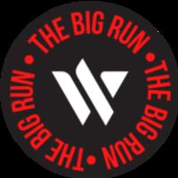 THE BIG RUN - Bradenton, FL - race119094-logo.bHtioL.png