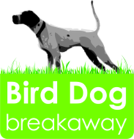 Bird Dog Breakaway - Waynesboro, GA - race118352-logo.bHowUv.png