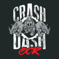 Crash Dash Houston - 290 Fitness - Houston, TX - race119979-logo.bHxCER.png