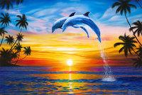 Dolphin Dash 5k, 10k, 15k, Half Marathon - Santa Monica, CA - il_fullxfull.648002710_sofb.jpg