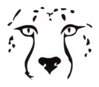 Stayton River Run - Stayton, OR - race7422-logo.bwX60r.png