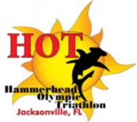 Hammerhead Olympic & Sprint Triathlon - Starke, FL - race9460-logo.btvz05.png