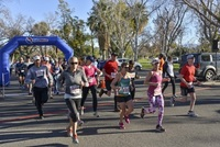 Palm Springs Health Run - Palm Springs, CA - fadc4fa8-0ba3-45e5-82da-278b10896113.jpg