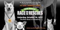 Race for the Rescues Los Angeles  - Pasadena, CA - R4Rescues_header.jpg