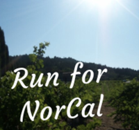 Run for NorCal - Your Town, CA - race52823-logo.bz3_Fb.png