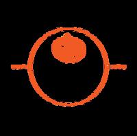 Pumpkinman 10K & 5K Run 2018 - Boulder City, NV - ded573e9-ac48-4900-9911-3ed4979a1e35.png