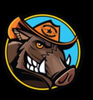 Hog Wild 5k & 10k - Bremond, TX - race54440-logo.bAie_S.png