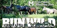 Mustang Run 2018 - Coalgate, OK - https_3A_2F_2Fcdn.evbuc.com_2Fimages_2F38544903_2F164397135485_2F1_2Foriginal.jpg
