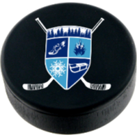 Pond Hockey Trail Run and Snowshoe Race - Chenango Forks, NY - race41845-logo.bywykp.png