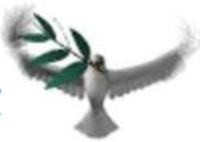 Feel The Spirit 5k - Cheektowaga, NY - race41515-logo.byslfH.png