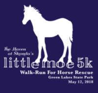 The Little Moe 5K Walk/Run - Fayetteville, NY - race40497-logo.bAW9Np.png