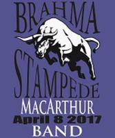 BRAHMA STAMPEDE 5K - San Antonio, TX - race43279-logo.byPje6.png