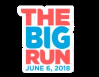 The Big Run - Fleet Feet Poughkeepsie - Wappingers Falls, NY - race57664-logo.bAGVVb.png
