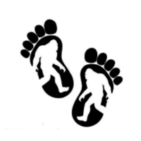 Bigfoot Fun Run - Yacolt, WA - race58962-logo.bAOCYu.png