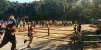 The Honey Badger Half (& 10K/5K) - San Rafael, CA - https_3A_2F_2Fcdn.evbuc.com_2Fimages_2F42188568_2F7654228147_2F1_2Foriginal.jpg