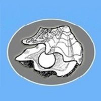 Quilcene Oyster Races - Quilcene, WA - race55433-logo.bALqNW.png