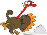 Englewood Turkey Trot - Englewood, FL - 5ab54ca5-189d-436d-a52a-59390c28e4e7.jpg