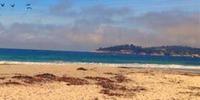 Applicant Preparation Program Workout - Pismo Beach, CA - https_3A_2F_2Fcdn.evbuc.com_2Fimages_2F44669000_2F195842010522_2F1_2Foriginal.jpg