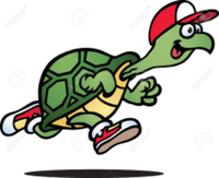 Turtle Trot 10K and Relay - Jeffersonville, NY - race62112-logo.bBaI43.png