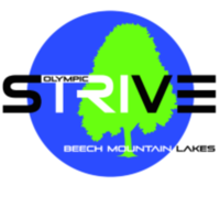 STRIVE TRIATHLON - Drums, PA - race56927-logo.bACkVN.png