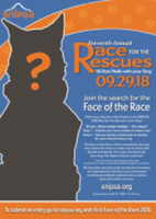 11th Annual Race for the Rescues 5K Run/Walk with your Dog - San Antonio, TX - race63907-logo.bBrpjg.png