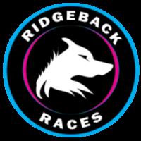 Bald Eagle Half Marathon and 10K - Callicoon, NY - race64142-logo.bBttiR.png