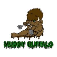 MUDDY BUFFALO TRAIL RACE - Holland, NY - race47900-logo.bBvOwL.png