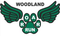 Woodland ROAR Run - Gurnee, IL - race45698-logo.bAQ_GG.png