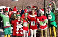 Funky Santa 5K & Three Person Relay - Pottstown, PA - race65831-logo.bBGydu.png
