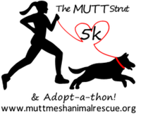 The Mutt Strut 5k & Adopt-a-thon - Pearland, TX - race66417-logo.bBL0oo.png