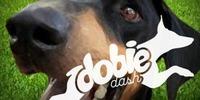 Dobie Dash 2019 - Glendale, AZ - https_3A_2F_2Fcdn.evbuc.com_2Fimages_2F50768949_2F134260329280_2F1_2Foriginal.jpg